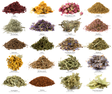Top 20 Herbs For Weight Loss - MashupCorner