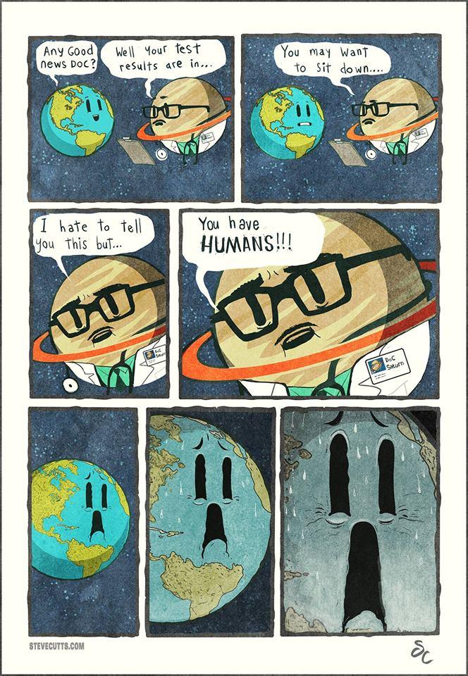 We Humans are So Stupid - MashupCorner