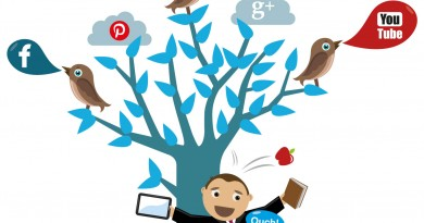 Amazing SMO Tips To Become A Social Networking Ninja