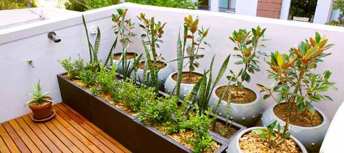 home renovation tips kitchen garden